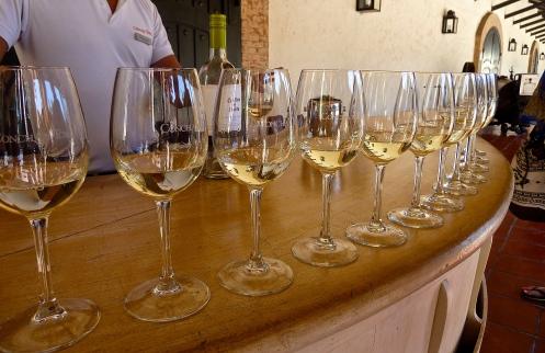 Wine tasting in Santiago, Chile